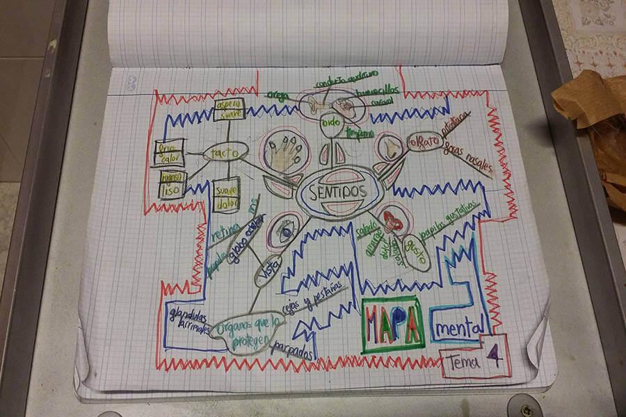 Ejemplo mapa mental niño