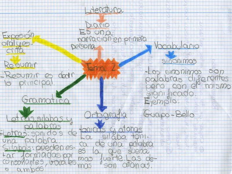 mapa mental con textos