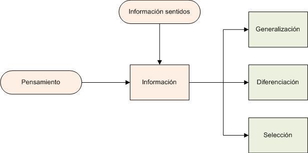 Diagrama: como funciona nuestro pensamiento