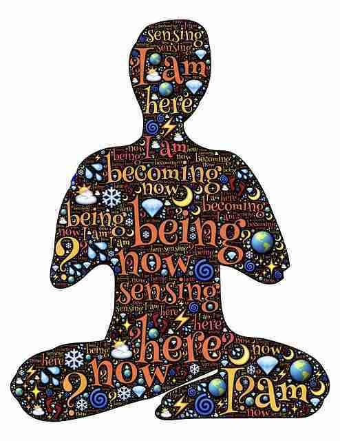 el proceso de la presencia meditación