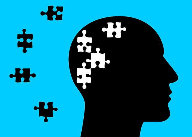 Puzzle en cerebro - Representación de tipos de memoria